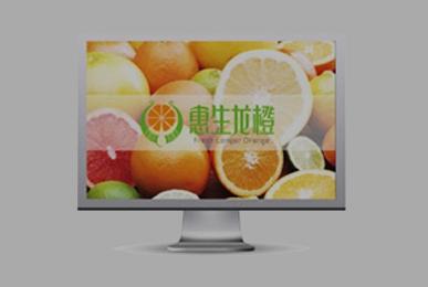 品牌设计-惠生龙橙