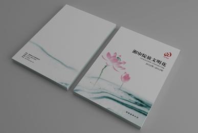 品牌设计-湖南省审计厅